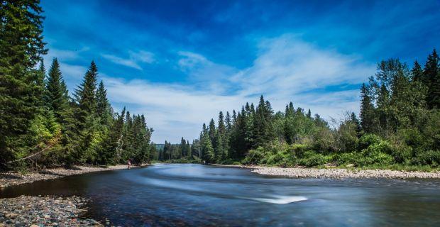 fishing LAKE side - ARTESJAPAN